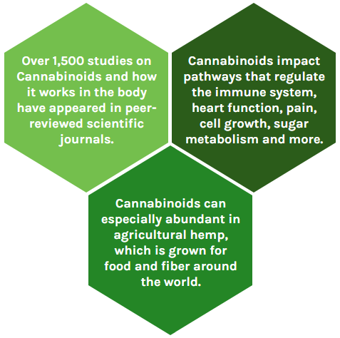 Cannabinoid Facts